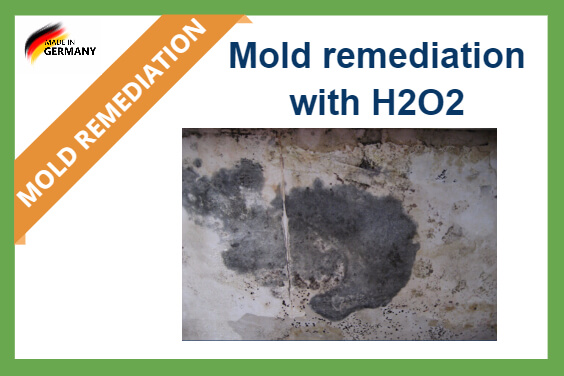 Mold removal hydrogen peroxide